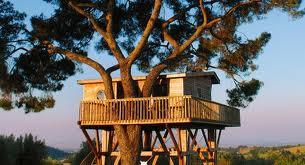 Lista di cose da fare dormire in una casa sull 39 albero muccapazza - Casa sull albero da costruire ...
